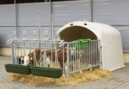 Large Calf Houses (2)