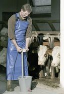 Milking and washing apron