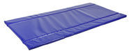 Disinfection Mat Standard