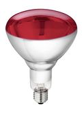 Hartglas-Infrarotlampe Philips