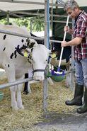 Brosse universelle et pour Tank à lait