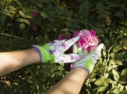 Gardening Gloves Calla