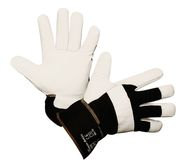 Winter Glove Arktic