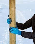 Winter Glove ThermoDry