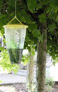 Insektenfalle Flycage & Waspcage