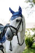 Fly Mask Exquisite