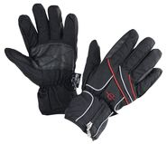 Winter Riding Glove Astana