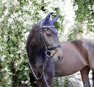Fly Mask Excelsior
