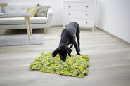 Sniff Rug