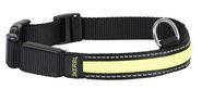 Collars/Leashes/Harness (15)