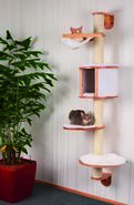Dolomit cat tree