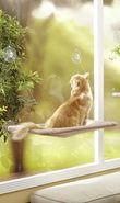 Window Hammock Sunny Seat