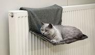 Cat Hammock Paradies