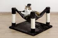 Cat Hammock Samira