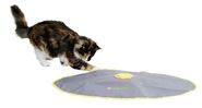 Cat Toy 2in1 Catch the TailFeather