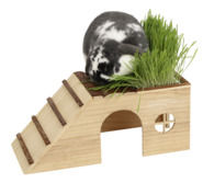 Rodent Cabin with Ramp Nature