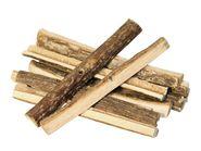 Nibbling Wood Nature
