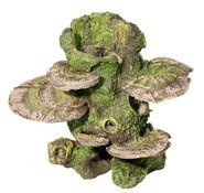 Stamm mit Pilzen
