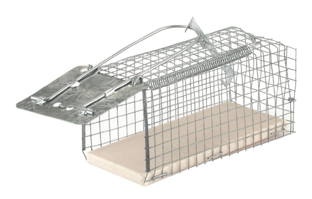 Wire Cage Mouse Trap Alive - Pest Control - Rat and Mouse