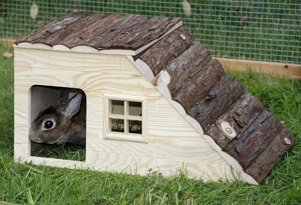 cosa posso mettere nella gabbia come gioco per conigli nani yahoo answers. Black Bedroom Furniture Sets. Home Design Ideas